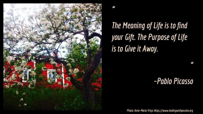 Purpose&Meaning.jpg