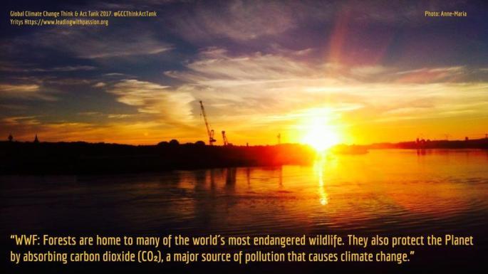 Global Climate Change (29).jpg