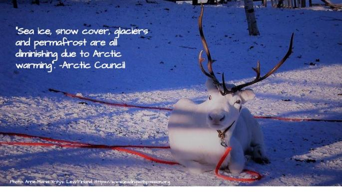 Arctic (17).jpg