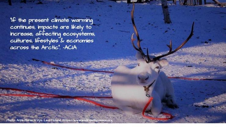 Arctic (38).jpg