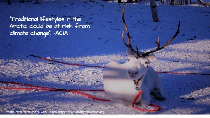 Arctic (46).jpg