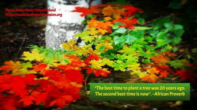 Nature quotes (6)