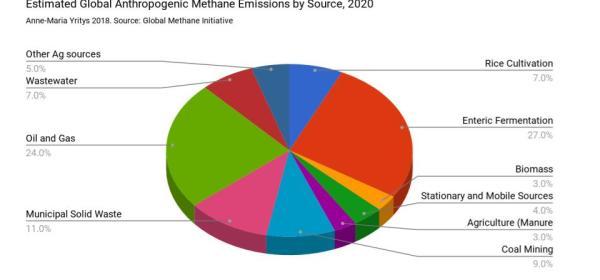Estimated Global Methane Emissions 2020